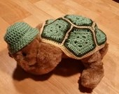 Turtle Baby Costume or Ad...