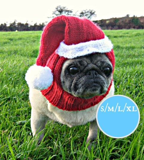 Santa Father Christmas Dog Hat. Bah, Humpug!