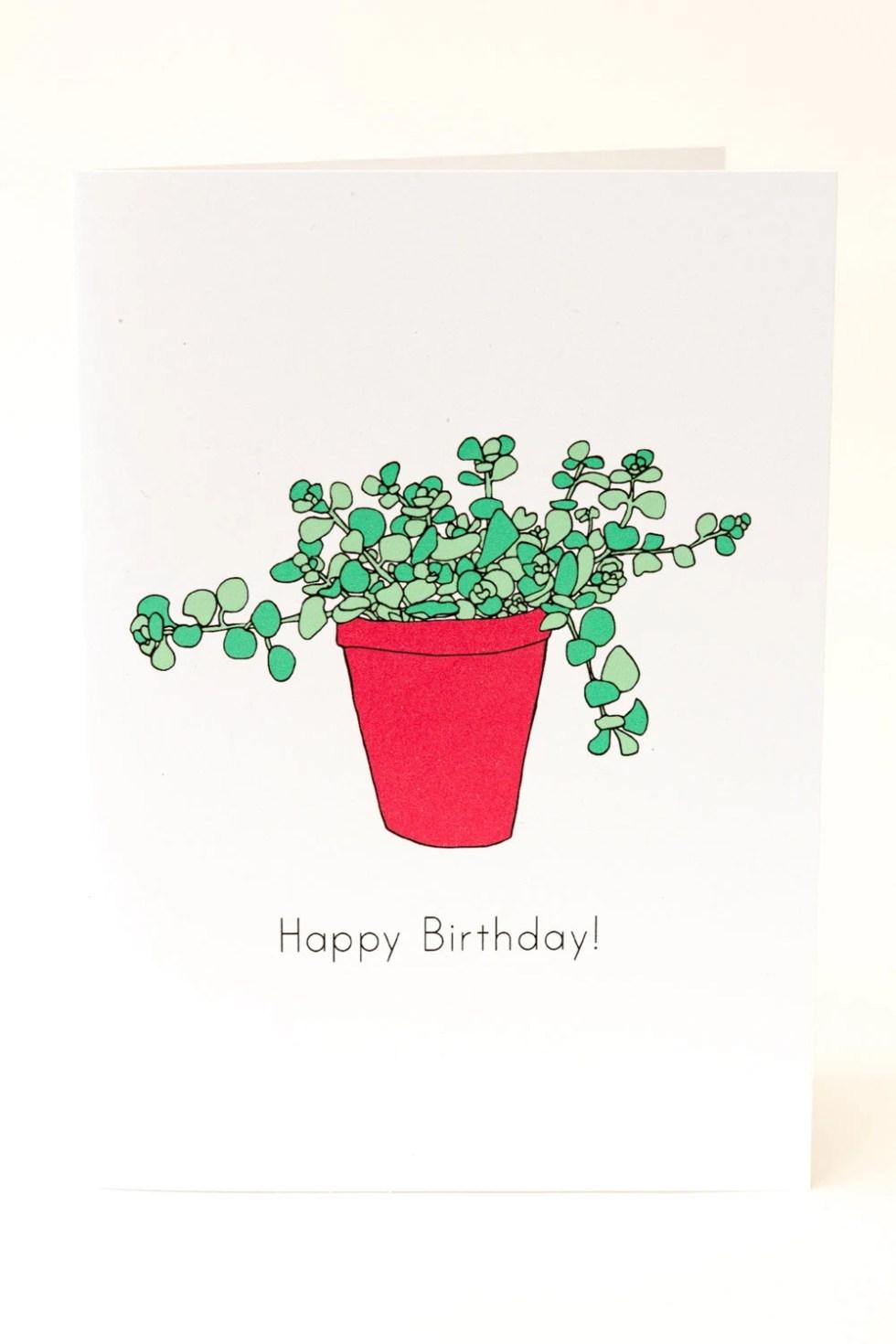 Succulents Birthday Card....