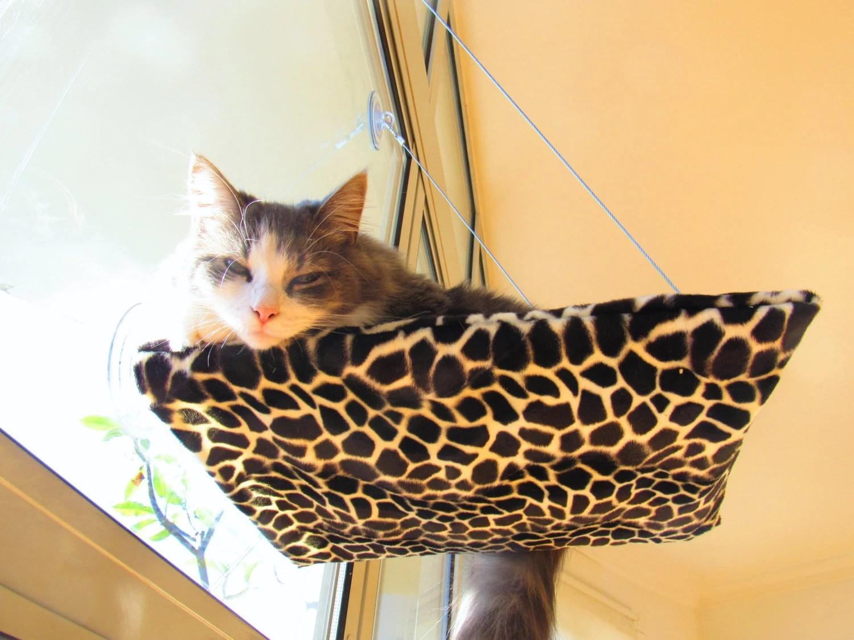 Cat Window Hammock M