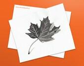 Maple Leaf - Original Ink...