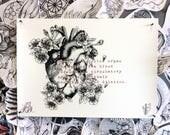 SALE! Anatomical Heart wi...