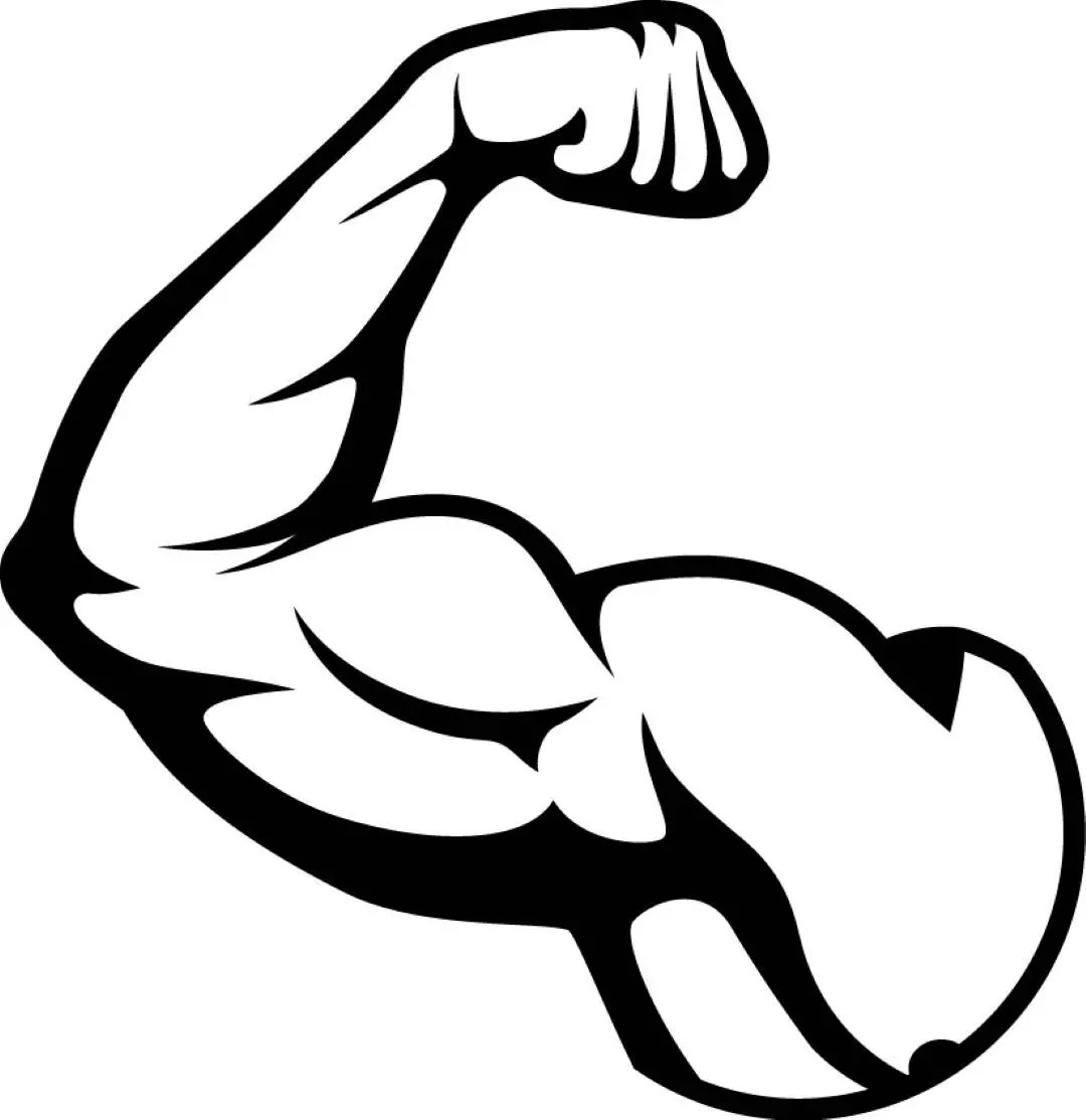 Bicep Muscles Fit Weightlifting Bodybuilding Fitness