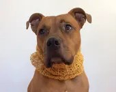 Scarf for a Dog, Knit Dog...