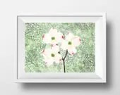Dogwood Flower Print.  Do...