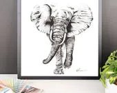 Framed poster, Elephant. ...