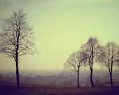 Landscape - MarionDunyach