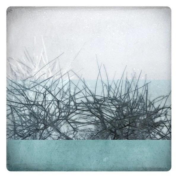 Ben hiver