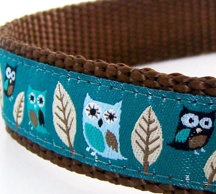 Owl Dog Collar in Teal Green/ Hootie