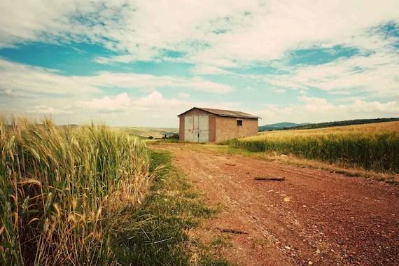 Tuscan Landscape 8x12 Print