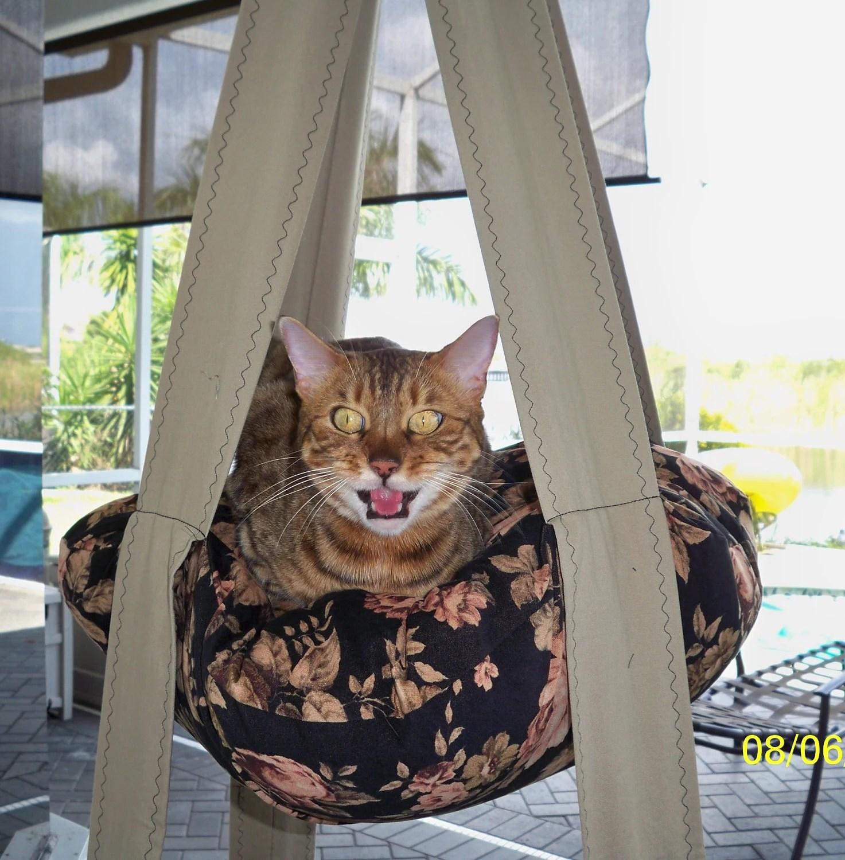 Двухместные Китти Облако Пыльный розы, платяной Cat кровать