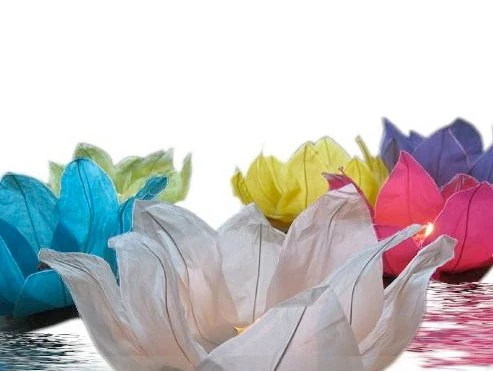 Floating Lotus Water Lantern set of 3