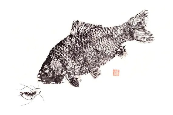GYOTAKU print - traditional Japanese fish art - Crucian Carp w/ shrimp by dowaito