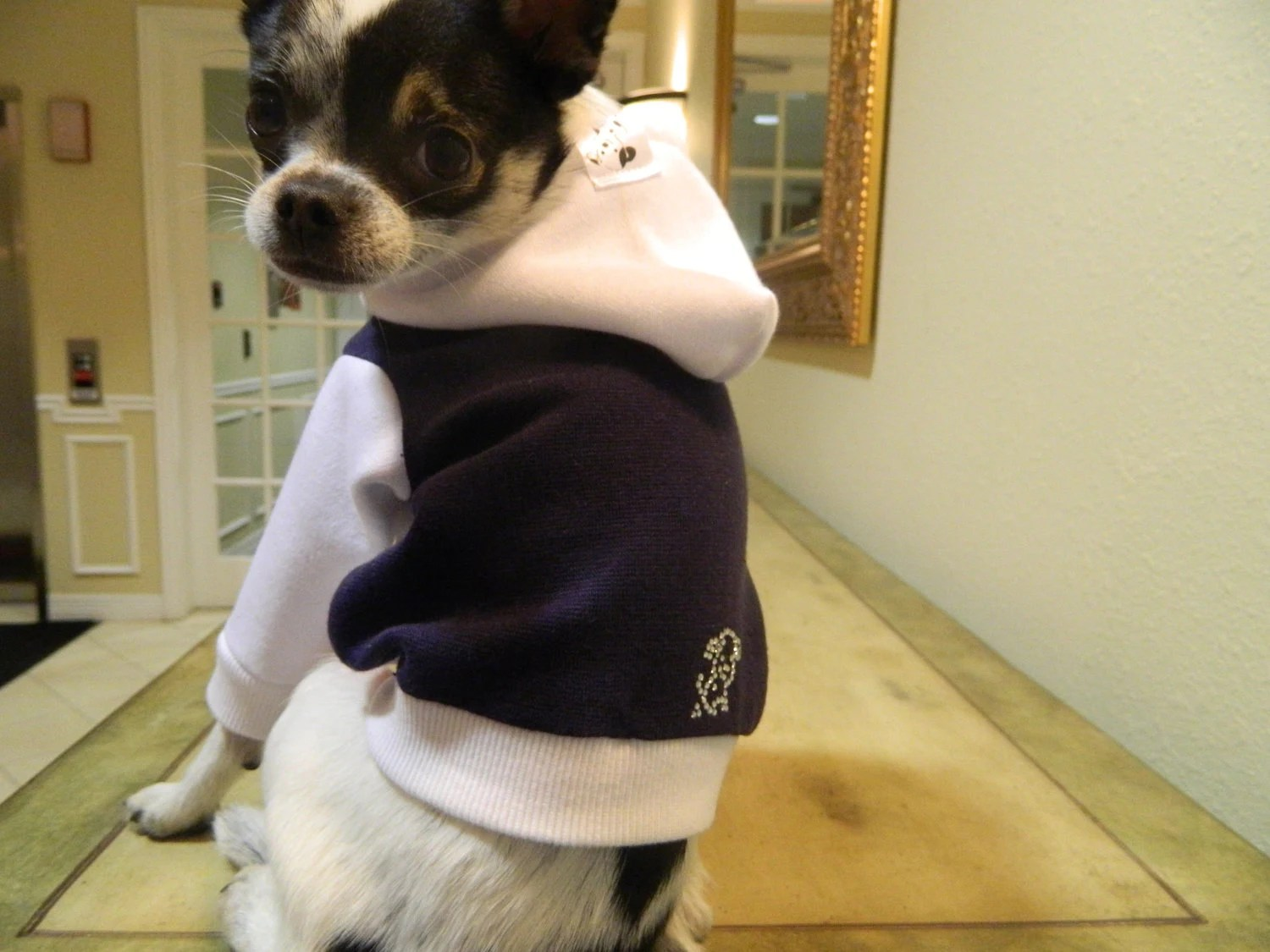 ALL SIZES Swarovski Crystal Logo Dog Hoodie