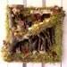 Woodland Fairy House Wall Art 3D