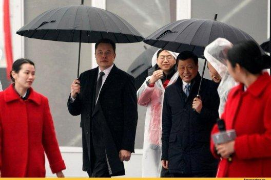 Tesla,Илон Маск,зонтик,стиль