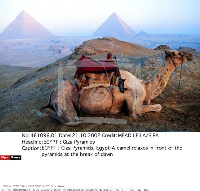 Misr piramidalarining sirlari Internetda oynaydi