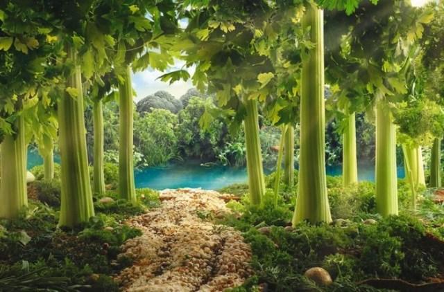 Съедобные леса и реки Карла Уорнера (8 фото)