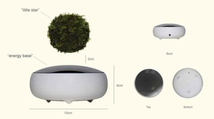 «Воздушный бонсай»   смесь технологий и древнего искусства