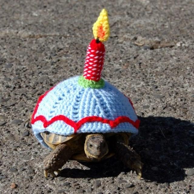 Необычные вязаные костюмы для черепах