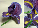 Preview crocheted_silk_iris_6 (700x525, 188Kb)