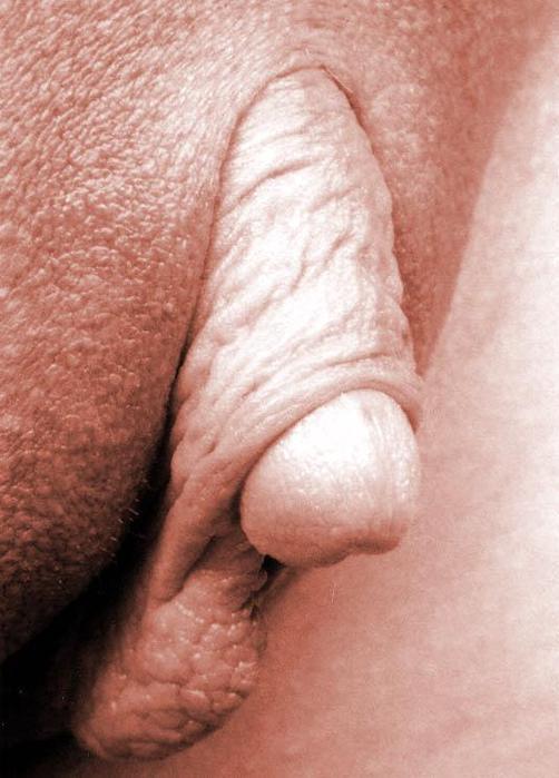 Veľká mačička pery labia Ázijský fetiš porno