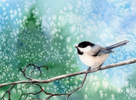 chickadee_8_bird_watercolor_painting_birds__animals__fac26c15e7b8c4f3ea911e229b9736bb (475x349, 147Kb)