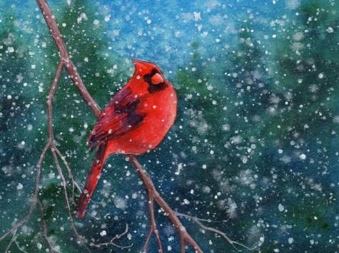 cardinal_2_watercolor_bird_painting_birds__animals__aad372e5af5c53190abb7168ae0b3ff0 (475x355, 169Kb)