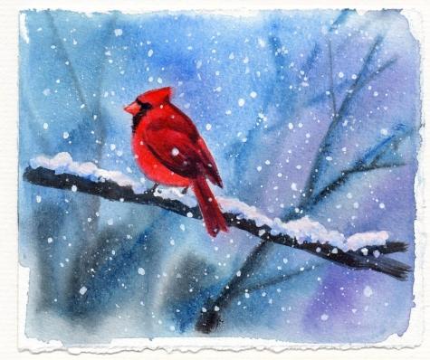 cardinal_bird_watercolor_painting_birds__animals__39cc89acb709fa48ac99a7f31b567e93 (475x398, 168Kb)