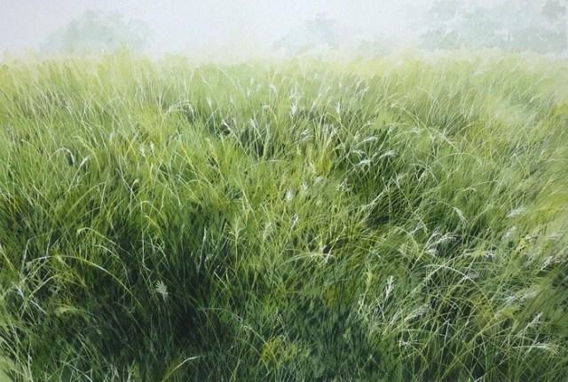 abe-toshiyuki-草の香り-30-45cm-watercolor-on-arches-2013 (700x470, 145Kb)