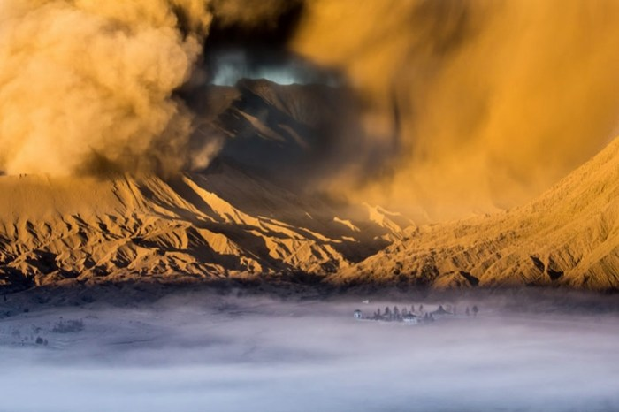 Фотографии конкурса National Geographic 2013 года