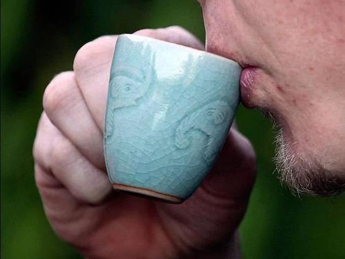 Самые дорогие сорта кофе: из экскрементов слонов, из Голубых гор и другие