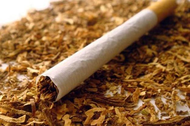 Когда начали курить табак?