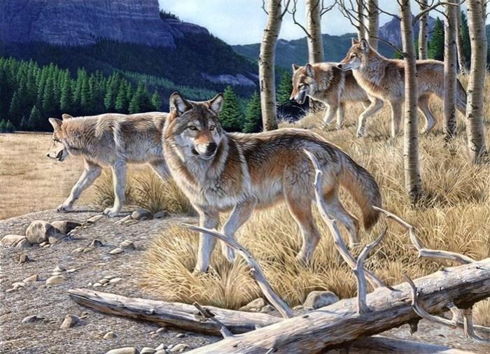 Животные в мировом искусстве. Анималистика