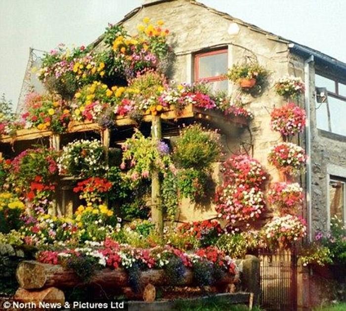 Цветочный дом в Англии   настоящий шедевр!