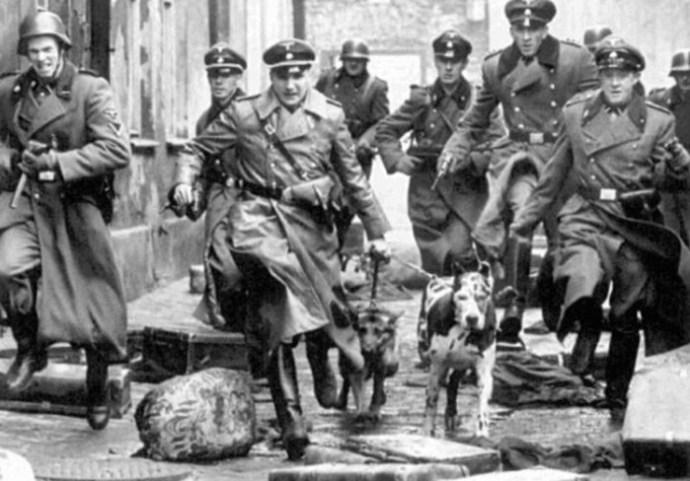Почему Нюрнбергском процессе не признали гестапо и СС преступными организациями