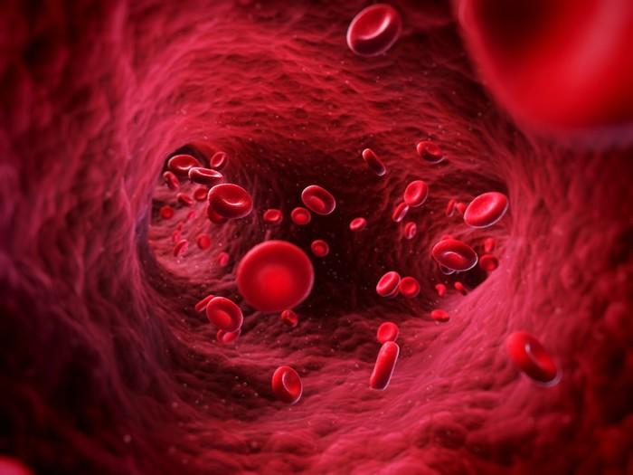 Применение крови в промышленности: самые необычные способы