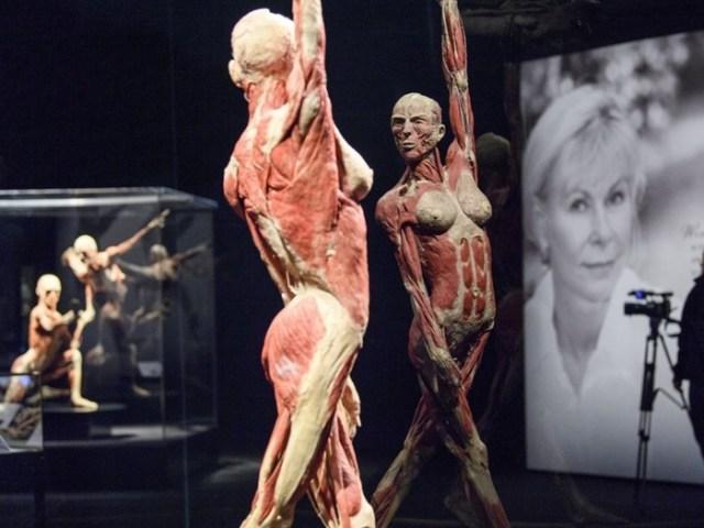 Анатомическая выставка в Женеве