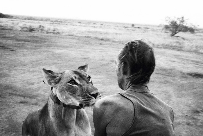 Как люди истребляют редких зверей и заставляют их кривляться на потеху публике