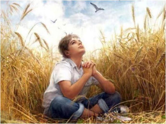 Библия американской молодежи или любимая книга убийц? Роман «Над пропастью во ржи»