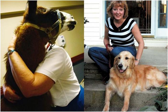 Истории о животных спасателях, прогремевшие на весь мир!