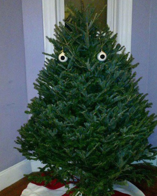 Удивительные факты про рождественские елки, которые вы должны знать