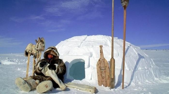 Как живут люди в суровых условиях Крайнего Севера: чум, яранга и иглу