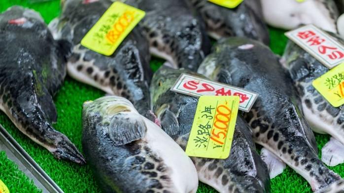 Самые опасные для жизни блюда, которые популярны в разных странах
