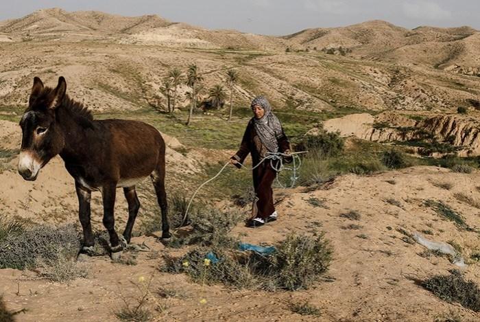 Жители подземных домов в Тунисе, которые стали знаменитыми после «Звездных войн»