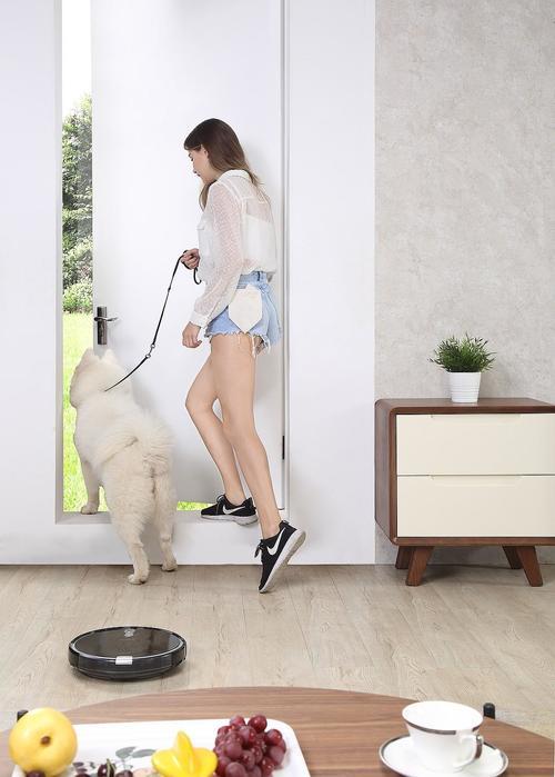 Когда шерсть повсюду: 6 лайфхаков чистоты для хозяев домашних животных