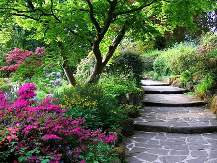 Зачем нужна лестница в саду?