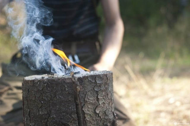 Как приготовить пищу на природе с помощью таежной свечи