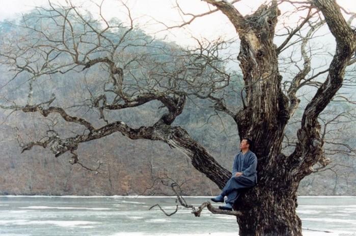 Эстетическое совершенство: 20 дьявольски красивых фильмов