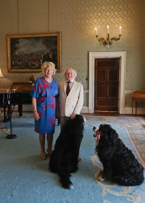 16 причин, почему президента Ирландии Майкла Хиггинса считают лучшим в мире
